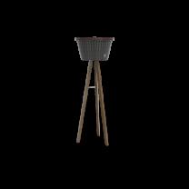 Mia Air Purifier Lamp
